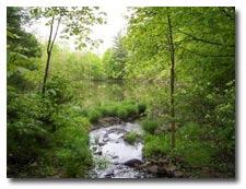 Villa Veritas where clients are achieving spiritual health in nature